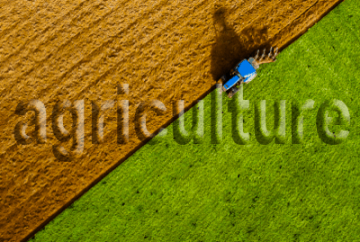 agriculture_stamp_400